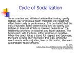 cycle of socialization11