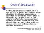 cycle of socialization12
