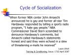 cycle of socialization8