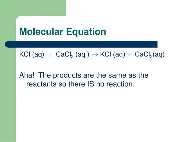 Molecular Equation