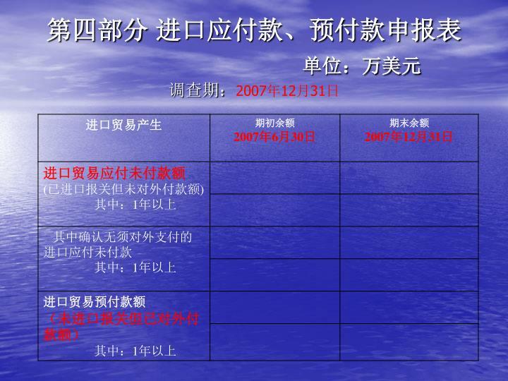 第四部分 进口应付款、预付款申报表