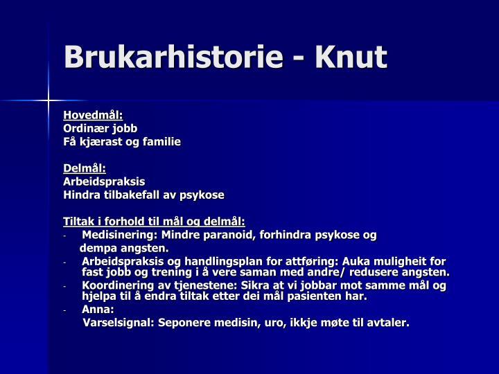 Brukarhistorie - Knut
