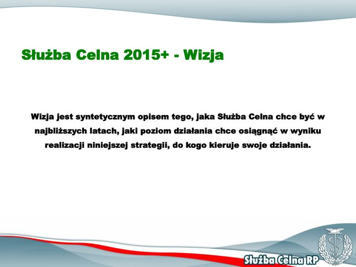 Służba Celna 2015+ - Wizja