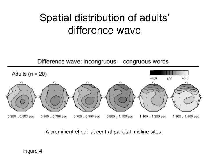 Spatial distribution of adults'