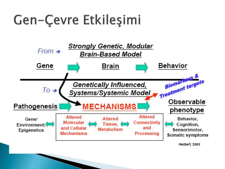 Gen evre etkile imi