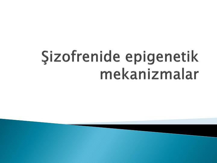 Şizofrenide