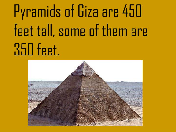 Pyramids of Giza are 450 feet tall, some of them are 350 feet.