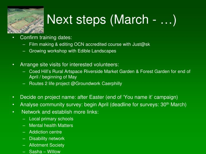 Next steps (March - …)