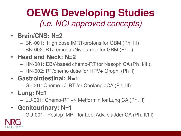 OEWG Developing Studies