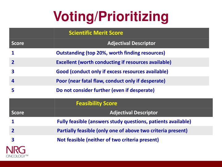 Voting/Prioritizing