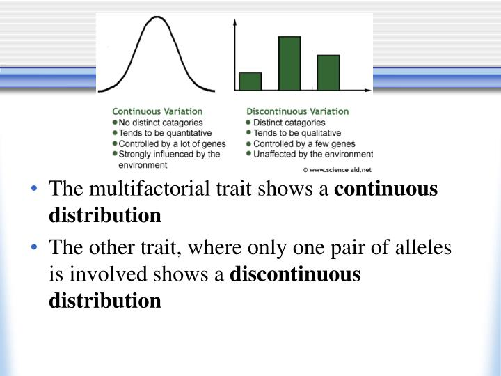 The multifactorial trait shows a
