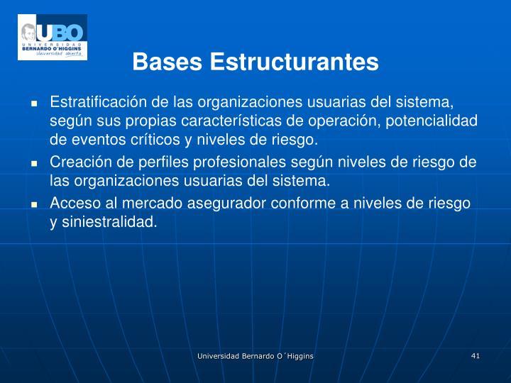 Bases Estructurantes
