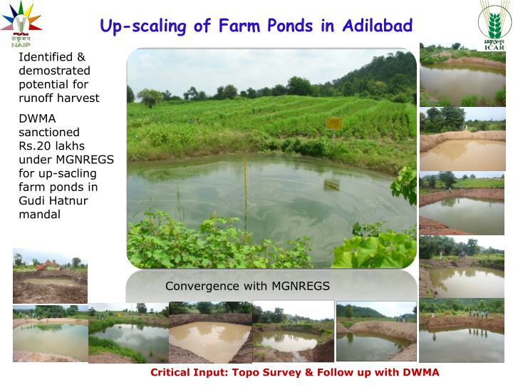 Up-scaling of Farm Ponds in Adilabad