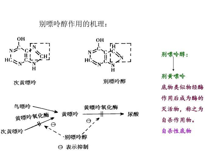 别嘌呤醇作用的机理: