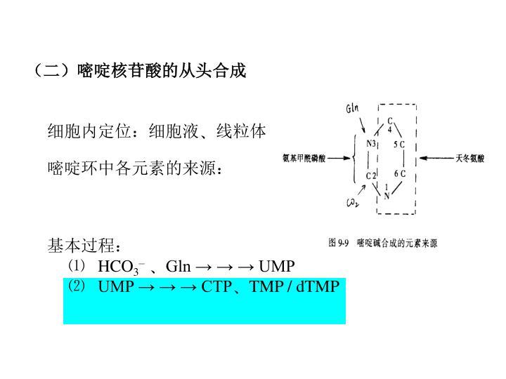 (二)嘧啶核苷酸的从头合成