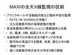 maxi x
