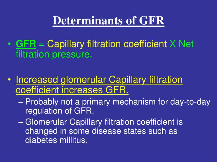 determinants of gfr