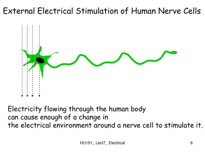 External Electrical Stimulation of Human Nerve Cells