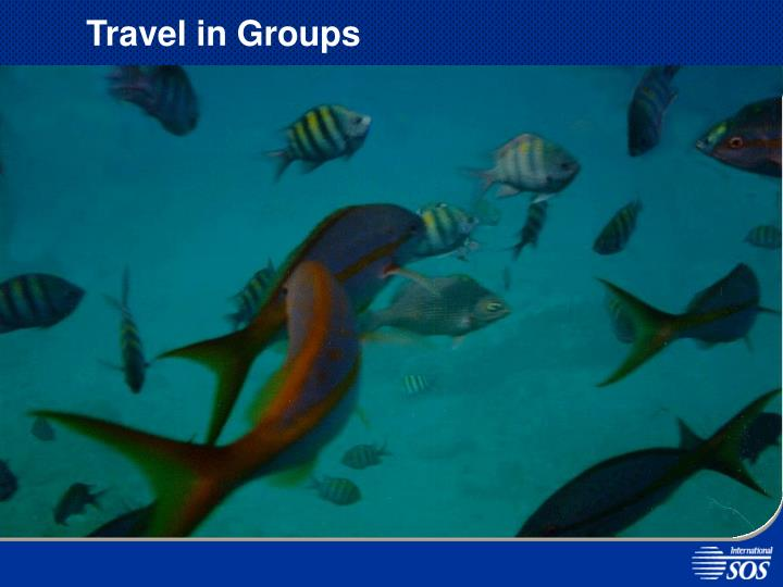 Travel in Groups