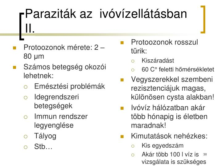 Paraziták az  ivóvízellátásban II.
