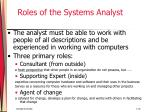 roles of the systems analyst