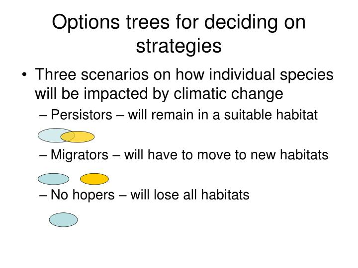 Options trees for deciding on strategies