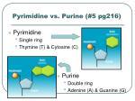 pyrimidine vs purine 5 pg216