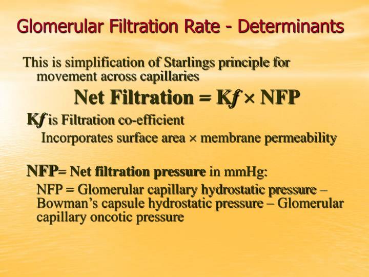 Glomerular Filtration Rate - Determinants