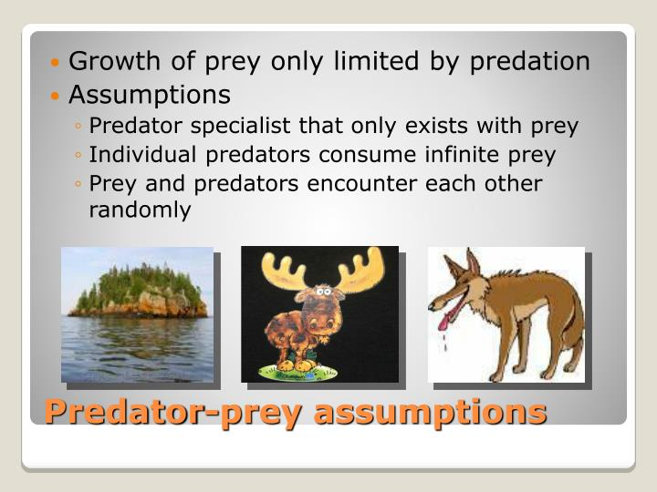 Growth of prey only limited by predation