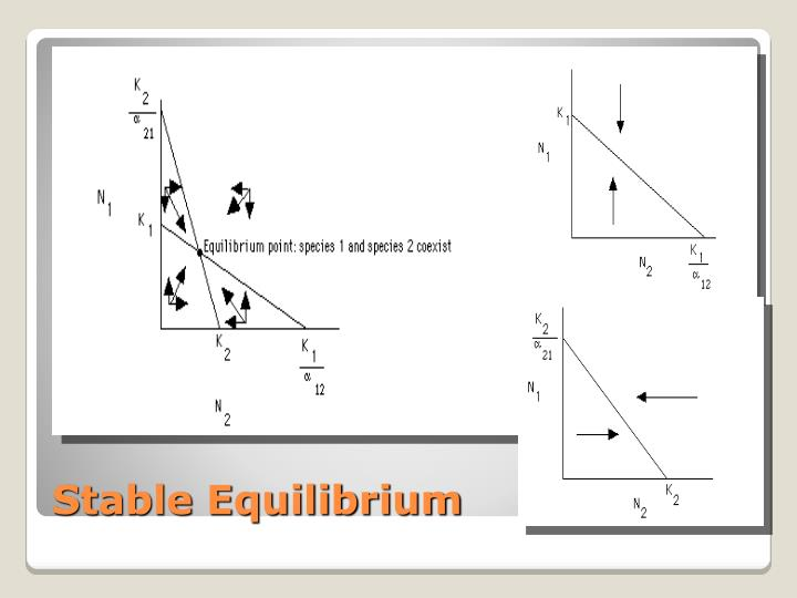 Stable Equilibrium