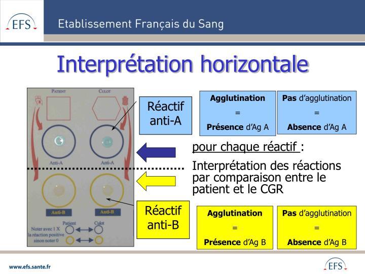 Interprétation horizontale