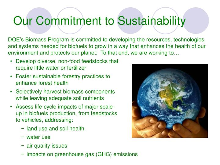 Our Commitment to Sustainability