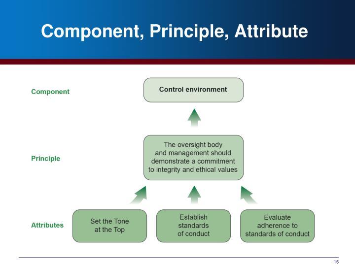 Component, Principle, Attribute