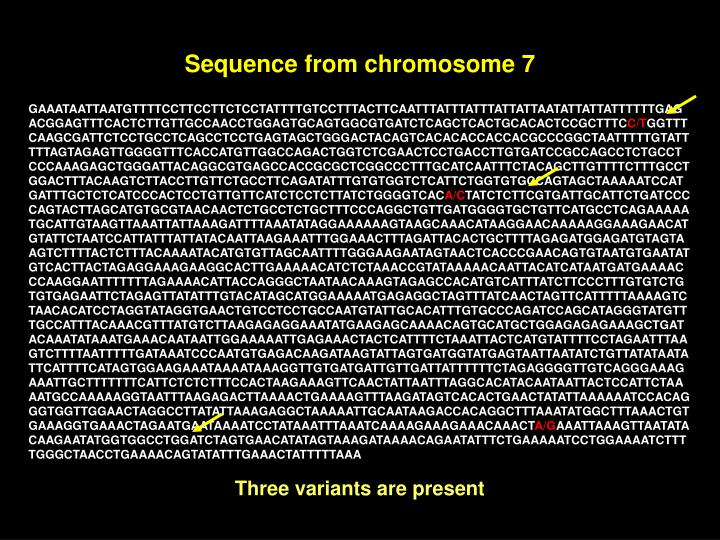 Sequence from chromosome 7