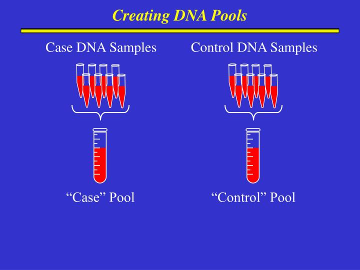 Creating DNA Pools