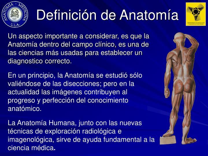 PPT - Definiciones Anatómicas Ejes y Planos de Construcción La ...