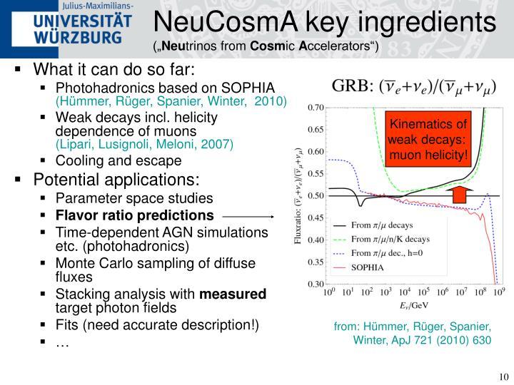 NeuCosmA key ingredients