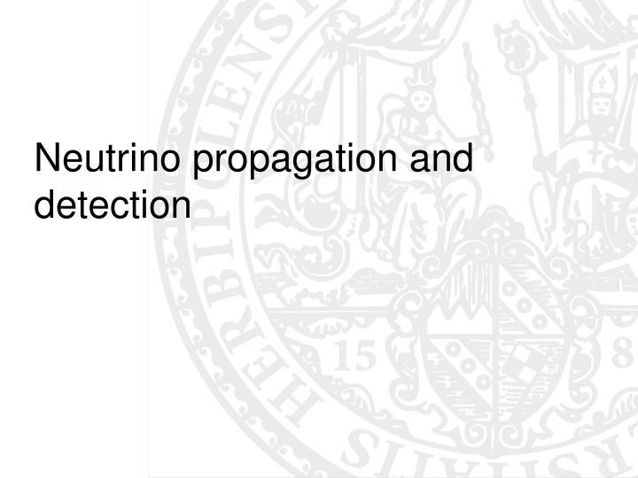 Neutrino propagation and detection