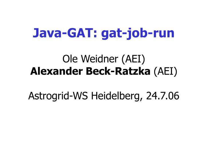 java gat gat job run ole weidner aei alexander beck ratzka aei astrogrid ws heidelberg 24 7 06 n.