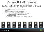 quantum sub network