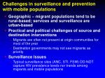 challenges in surveillance and prevention with mobile populations