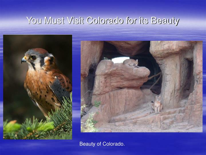 You Must Visit Colorado for its Beauty
