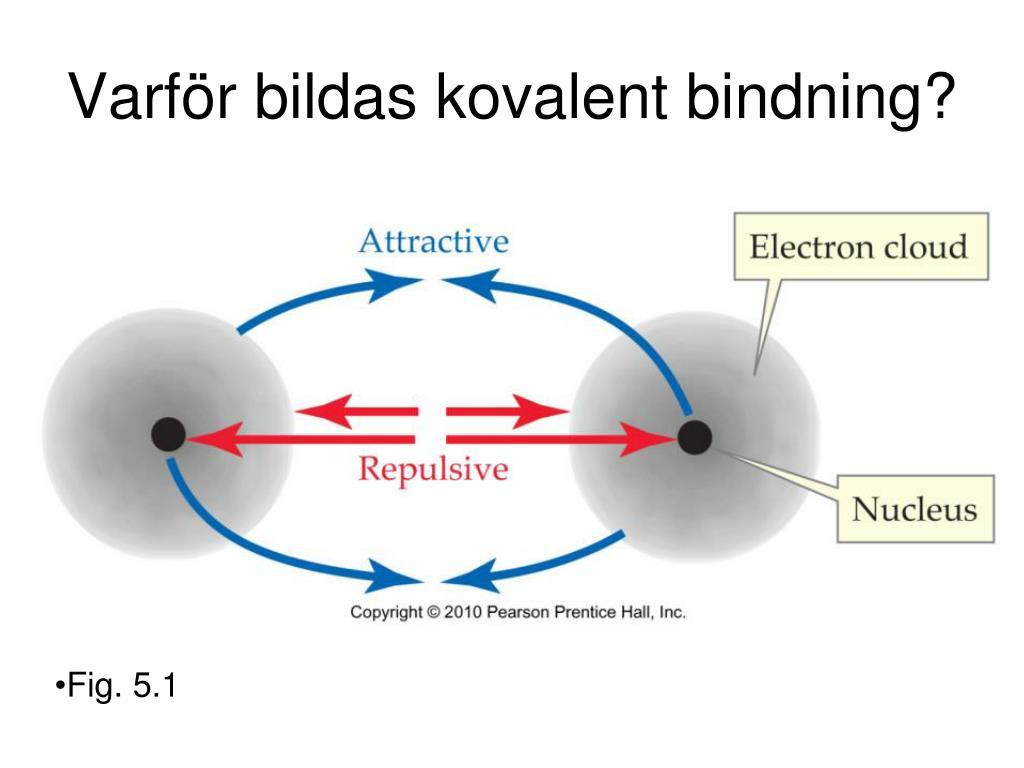 Kovalent Bindning