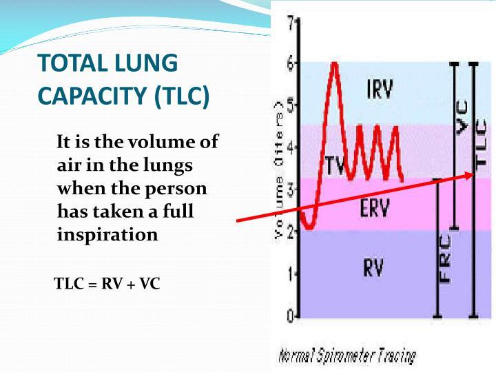 TOTAL LUNG CAPACITY (TLC)