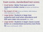 exam scores standardized test scores