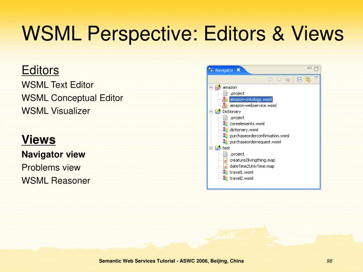 WSML Perspective: Editors & Views